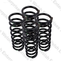 Jaguar Rear Road Spring Set Of 4