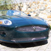 XK Lower Mesh Grille (2007-2010)