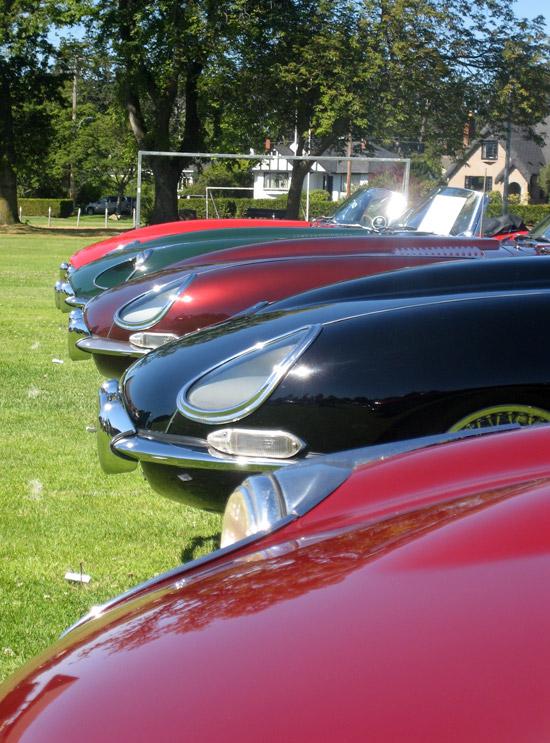 2010 Victoria Jaguars On The Island